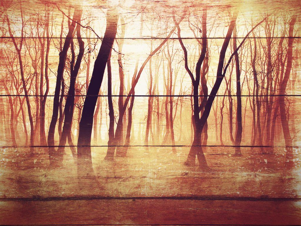 foto na dřevo